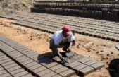 Advierten sobre las inhumanas condiciones laborales de los trabajadores ladrilleros