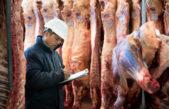 Proponen que los frigoríficos exporten cuota de cuero crudo