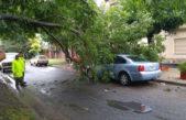 La Plata / Sostienen que cesó el alerta por las lluvias pero continúan con el monitoreo y asistencia de zonas afectadas