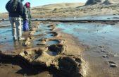 La provincia abre las reservas naturales para las vacaciones de invierno