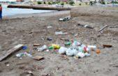 """Realizarán una jornada de limpieza y un """"censo de basura"""" en las playas de las costas bonaerenses"""