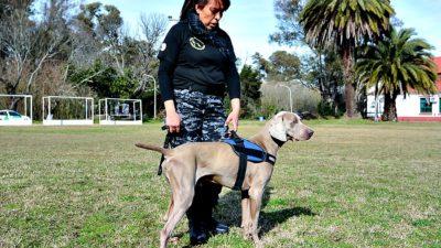 Novedad mundial / Escobar comenzó a utilizar perros para investigar casos de abigeato