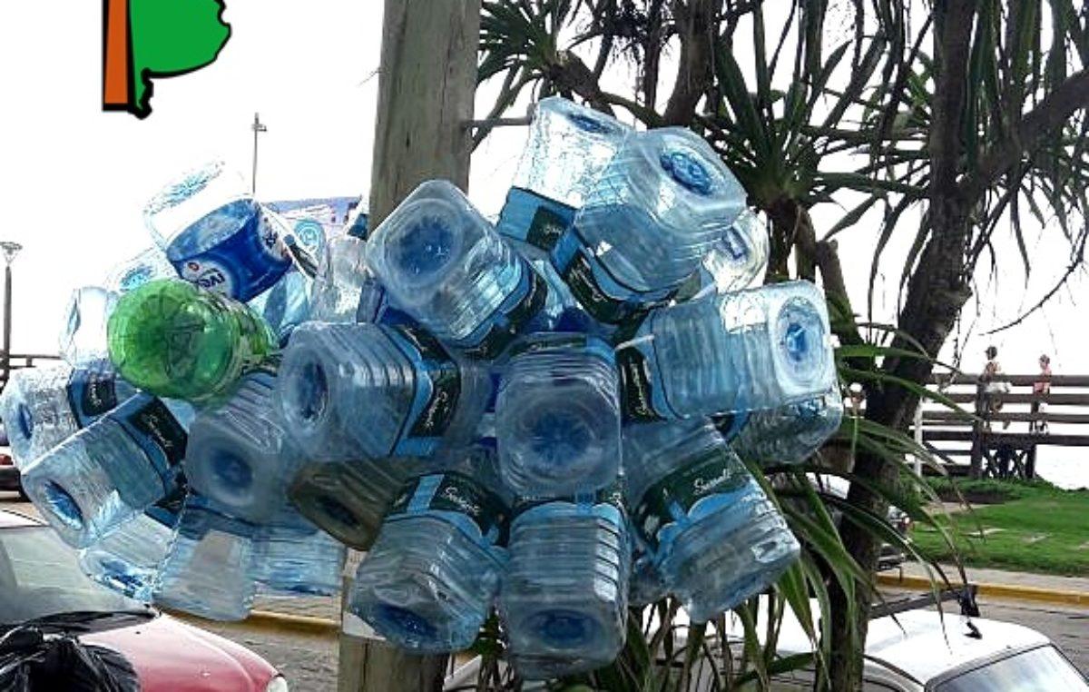 El drama de vivir con agua salada: A los vecinos de Santa Teresita les brota el mar por las canillas