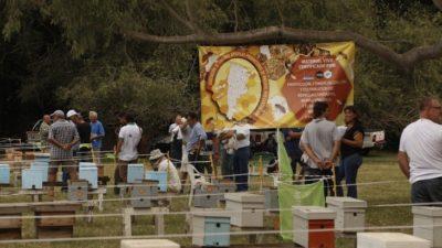 Agregar genética implica un crecimiento del 30% en la producción apícola