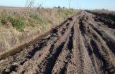"""Desde CARBAP aseguraron que """"el 60% de los caminos rurales está en mal estado"""""""